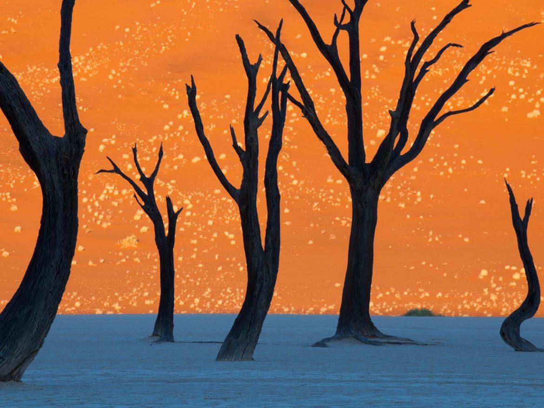 L'Afrique, une inspiration quotidienne… Namibie