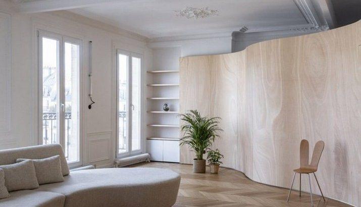 Toledano + Architects Fascine dans un Bel Appartement à Paris
